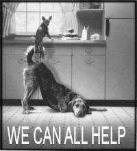 friends-helping-friends