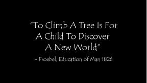 climb-a-tree